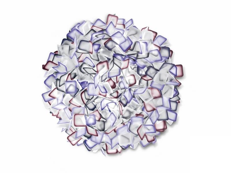 clizia_large_purple-800x600