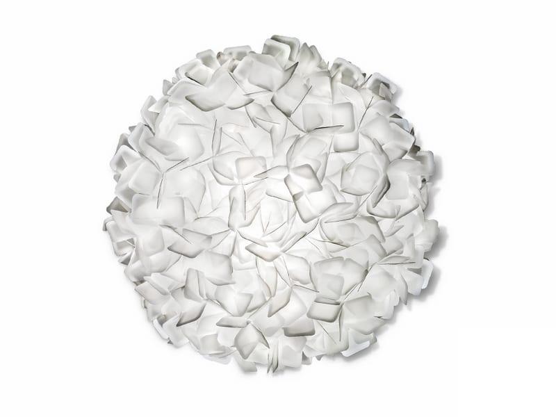 clizia_large_white-800x600