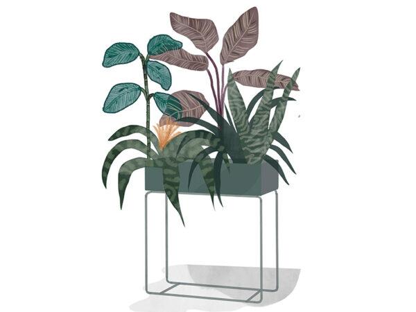 Ambiance pot à plante rectangulaire PLANT BOX DARK GREEN_PROFIL_3314 ferm living
